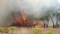 SARıLAR - Manavgat'ta Orman Yangını