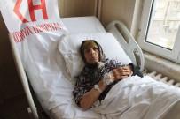YAŞLI KADIN - Yaşlı Kadının Kırılan Omzu Protez Takılarak Düzeltildi