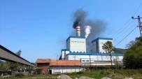 BELEDİYE BAŞKANLIĞI - Çatalağzı Ve Muslu'daki Termik Santral Başvurusu İle ÇED Süreci Durduruldu