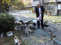 YAT LİMANI - 'Kedi Bölüğü' Sabah İçtimasında