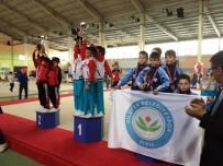 NİLÜFER - Nilüferli Cimnastikçiler Türkiye Üçüncüsü Oldu