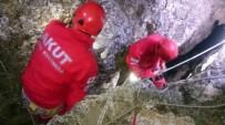 2 Gün Boyunca Kayalıklarda Mahsur Kalan Köpek Kurtarıldı