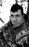 FIRAT KALKANI - Bingöl'de şehit olan Uzman Çavuş Çeçen'in acı haberi Tokat'a ulaştı