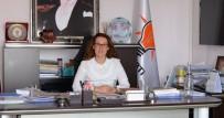 ANAYASA - Karadağ'dan Başkanlık Sistemi Açıklaması