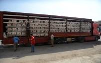 İNSANİ KRİZ - Kızılay'ın Musul Yardım Konvoyu Erbil'e Ulaştı