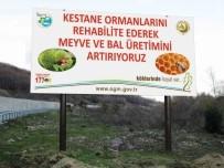 VEYSEL EROĞLU - Zonguldak Ve Bartın'da Kestane Kanserine Karşı Mücadele Sürüyor