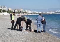 KADIN CESEDİ - Antalya'da Sahilde Kadın Cesedi Bulundu