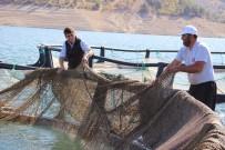 ALABALIK - Denizi Olmayan Şehirden Kıtalar Arası Balık İhracatı