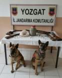 İL JANDARMA KOMUTANLIĞI - Yozgat Jandarma'dan Uyuşturucu Operasyonu