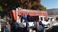 ÇİÇEK HASTALIĞI - Foça'da Çiçek Hastalığı İçin 600 Torba Kireç Dağıtıldı