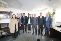 SOSYAL HİZMET - Yüksekokul Müdürü Prof. Dr. Zengin'den Özaltun'a Ziyaret