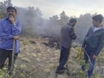 Hasandağı Eteklerinde Orman Yangını