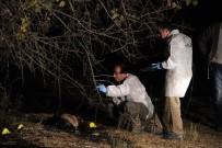 KADIN CESEDİ - Muğla'da yanmış kadın cesedi bulundu