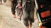 TSK - TSK, PKK'lı teröristlerin telsiz konuşmalarını yayınladı!