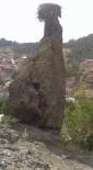 Çarkaca'da Leylek Kayası'na İmece İle Yol Yapıldı