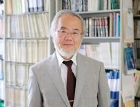 NOBEL TIP ÖDÜLÜ - Nobel Tıp Ödülü Japonya'ya gitti