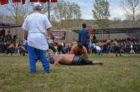 ALI YÜKSEL KAVUŞTU - Kargı Güreşlerinde Recep Kara Başpehlivan