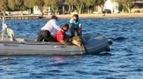 DENİZ KAPLUMBAĞALARI - Deniz Kaplumbağasının İmdadına AKUT Ekibi Yetişti