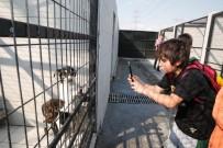 TARIM BAKANLIĞI - Dünya Hayvanları Koruma Günü'nde Çocuklardan Anlamlı Ziyaret