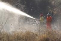 GÜVERCINLIK - Manavgat'ta Orman Yangını
