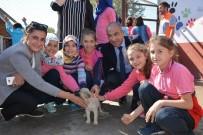 HAYVAN SEVGİSİ - Niksar'da Öğrencilere 'Hayvan Sevgisi' Aşılandı