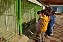 AYDOĞMUŞ - Tepebaşı'nda Dünya Hayvanları Koruma Günü Kutlandı