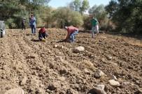 Yozgat Çiftçisi Taş Toplama Makinesi İstiyor