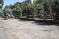 OKUMA SALONU - DÜ'de Asfalt Çalışmaları Devam Ediyor