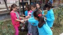 ÇEVRE TEMİZLİĞİ - Minik Öğrencilerden Çevre Temizliği