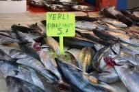 BALIK SEZONU - Palamut Bolluğu Hem Balıkçıların Hem De Vatandaşların Yüzünü Güldürdü