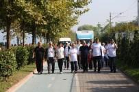 BİSİKLET YOLU - Sağlık İçin Yürüyüş Sapanca'da Yapıldı