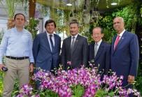 SENFONİ ORKESTRASI - Singapur'un Orkide Bahçesi EXPO 2016'Da Açıldı