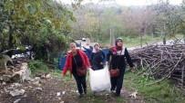 DÜNYA YAŞLILAR GÜNÜ - AK Parti Akçakoca Kadın Kolları Yaşlıları Ziyaret Etti