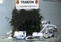 Trabzon'da Özel Düzeneklerle Uyuşturucu Yetiştirilen Eve Baskın Düzenlendi