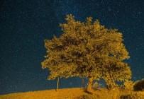 KUTUP YıLDıZı - Ovacık'ta Yıldızların Dansı Göz Kamaştırdı