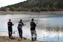 AMATÖR BALIKÇI - Büyükşehir'den Amatör Balıkçılığa Destek