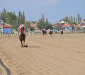 TÜRKIYE JOKEY KULÜBÜ - Mahmudiye'nin Safkanları Hipodroma Çıktı