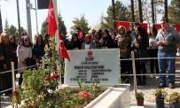 ÇUKURKUYU - Selçuklu'dan 'Şehidine Vefa' Turları Devam Ediyor