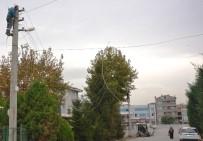 METİN ORAL - Altınova'da Elektrik Hatları Yer Altına Alındı