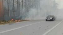 ANIZ YANGINI - Anız Yangını Büyümeden Söndürüldü