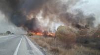 BEYŞEHIR GÖLÜ - Beyşehir Gölü Milli Parkı'nda Sazlık Yangını