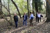 İĞNEADA - Bursa Büyükşehir Belediyesi'nden İğneada Longoz Ormanları Milli Parkı'na Gezi