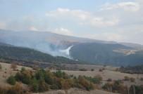 SERENLI - Tokat'taki Orman Yangınına Uçakla Müdahale Ediliyor