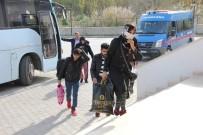 ÇAMYUVA - Antalya'da 253 Kaçak Göçmen Yakalandı, 2 Kişi Gözaltına Alındı