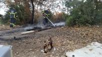 BUZDOLABı - Ayyaşlar Az Kalsın Ormanı Yakıyorlardı