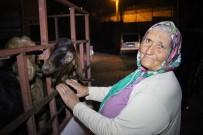 MOBESE - Çalınan Keçilerini Teslim Alan Yaşlı Kadın Duygularına Hakim Olamadı