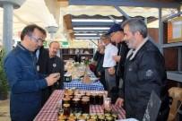 EKINEZYA - 4'Üncü Şile Tohum Takas Şenliği Başladı
