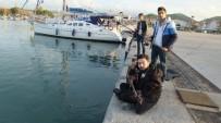 Burhaniye'de Sazlı Sözlü Balık Avı
