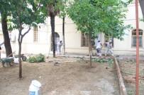 CAMİ BAHÇESİ - Maarif-İ Sultan Camii'nin Bahçesi Yenilendi