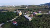 SOĞUK HAVA DEPOSU - Altınordu Belediyesi'nden Milyonluk Tesis